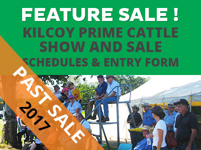 2017 Kilcoy Show – Prime Cattle Section