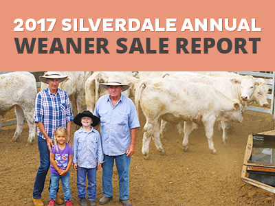 Record Breaking 2017 Silverdale Annual Weaner Sale