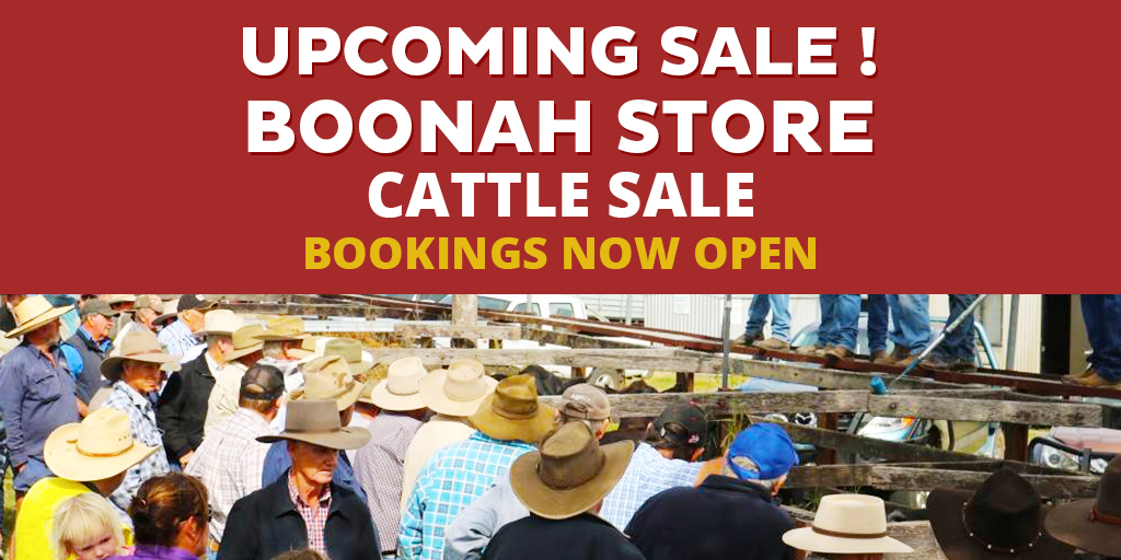 Boonah Sale Facebook Image Hayes And Co