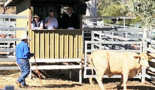 Boonah Show